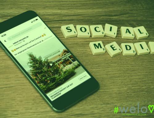 Social-Media-Partner-Kampagnen – Beispiele Dezember 2019